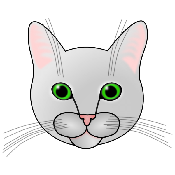 File:Gyro the cat 22 dec 2014.png